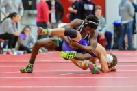 Gallery: Boys Wrestling MP Premier Tournament